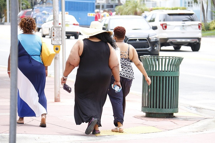 New Remedy Against Obesity